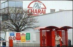 charal2.jpg